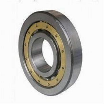300 mm x 380 mm x 38 mm  INA SL181860-E Rolamentos cilíndricos